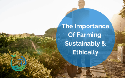 The Importance of Farming Sustainably and Ethically