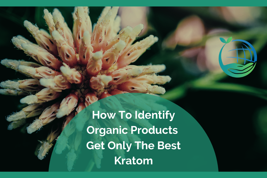 Identify Organic Products: Get Only The Best Kratom